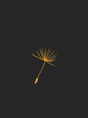 Varo . company profile + website